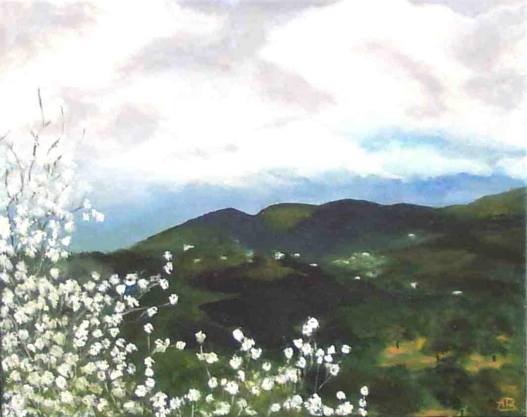 fruehling 2004 1